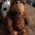 Alf HA